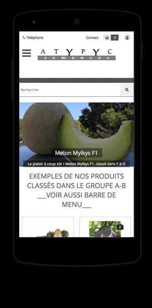 atypyc.com en version mobile est réalisé avec epro shopping